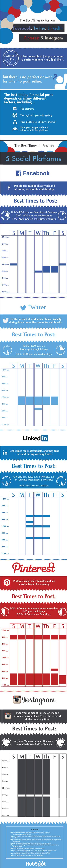 Infographic - social media